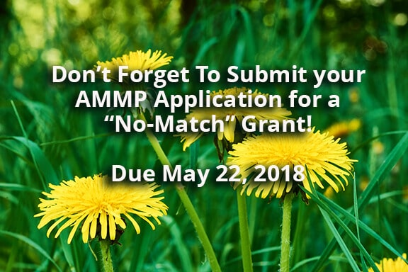 Spring Flowers and AMMP Grant Due Date May 22 2018