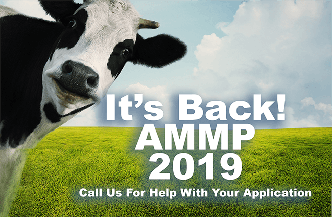 AMMP Grants For 2019
